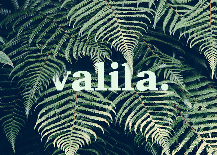 diseno_logotipo_marca_ropa_sostenible