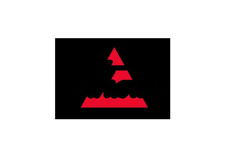 diseno-logotipo-organizacion-eventos